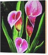 Three Pink Calla Lilies. Wood Print