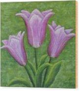 Three Pink Tulips Wood Print