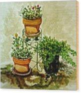 Three Potted Plants Wood Print