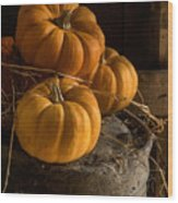 Three Pumpkins On A Bucket Wood Print