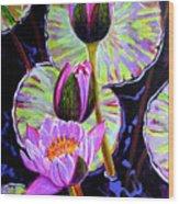 Three Purple Lilies Wood Print