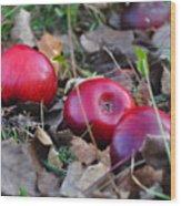 Three Red Apples Wood Print
