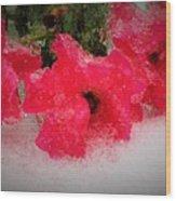 Three Rose Crystals  Wood Print