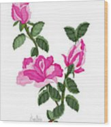 Three Roses In The Garden Wood Print