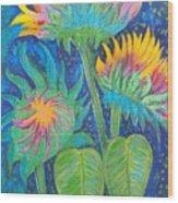 Three Sunflowers In The Mid Summer Night  Wood Print