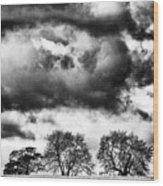 Three Tree Tops Landscape Wood Print