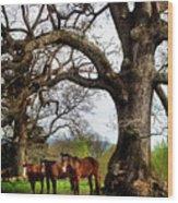 Three Under A Tree Wood Print