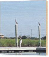 Three Watchbirds Wood Print