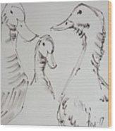 Three White Ducks Drawing Wood Print