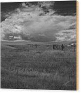 Three White Horse And Corral Bw Wood Print