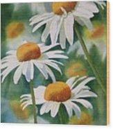Three Wild Daisies Wood Print by Sharon Freeman