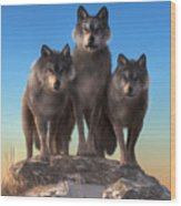 Three Wolves Watching You Wood Print