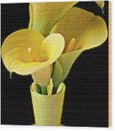 Three Yellow Calla Lilies Wood Print by Garry Gay