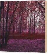 Through A Forest Wood Print
