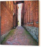 Through Marietta Ohio Wood Print