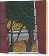 Through My Neighbors Porch Wood Print