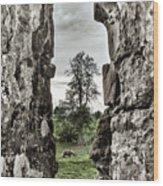 Through The Castle Window Wood Print