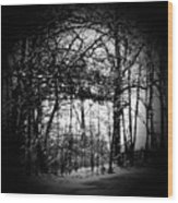 Through The Lens- Black And White Wood Print