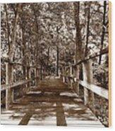 Through The Narrow Path  Wood Print