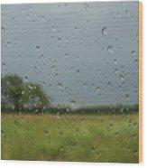Through The Raindrops Wood Print