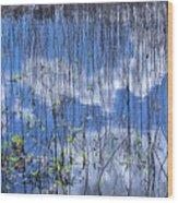 Through The Reeds Wood Print