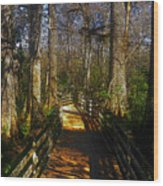 Through The Swamp Wood Print