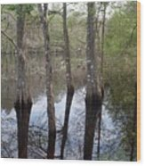 Through The Trees And To The River Wood Print