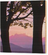 Through The Trees In Vancouver B.c 42 Wood Print