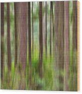 Through The Trees Wood Print