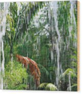 Through The Waterfall Wood Print