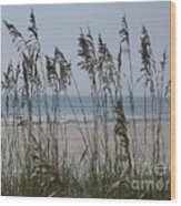 Thru The Sea Oats Wood Print