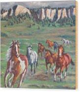 Thunder On The Pine Ridge Wood Print