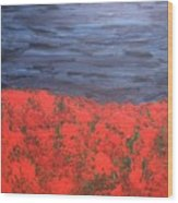 Thunderstorm Over The Poppy Field Wood Print