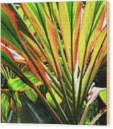 Ti Stripes Wood Print