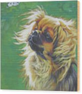 Tibetan Spaniel And Cabbage White Butterfly Wood Print