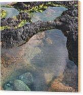 Tidal Pool Wood Print