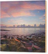 Tidal Pools At Sunrise Wood Print