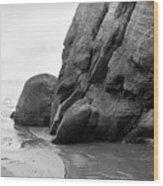 Tide Pool Oregon Coast Wood Print