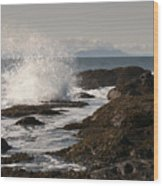 Tide Pool Wave Wood Print