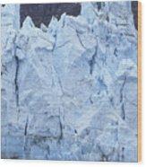 Tidewater Glacier In Glacier Bay Wood Print