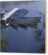 Tied To The Dock Wood Print
