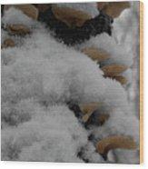 Tiered Powder Wood Print