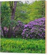 Tiergarten In Spring Wood Print