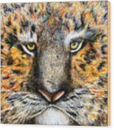 Tig The Tiger With An Attitude Wood Print