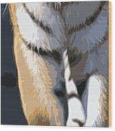 Tiger 16 Pano Wood Print