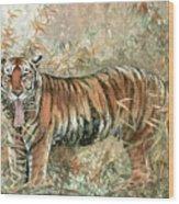 Tiger - 28 Wood Print