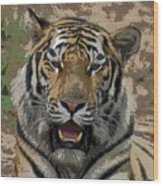 Tiger Abstract Wood Print