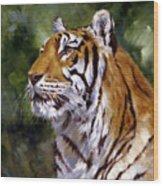 Tiger Alert Wood Print