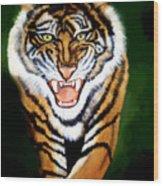 Tiger Charging Wood Print
