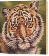 Tiger Cub Wood Print